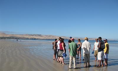 Wodli  ngundarta field trip Aldinga Beach 2013